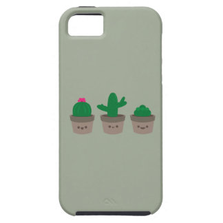 Coques Case-Mate iPhone 5 Succulent doux