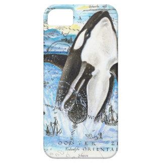 Coques Case-Mate iPhone 5 Violation de la carte antique d'orque