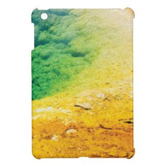 Coques iPad Mini arc-en-ciel d'illustration d'algues
