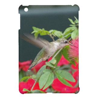Coques iPad Mini Colibri