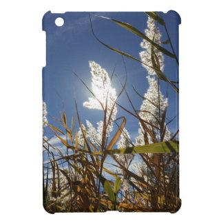 Coques iPad Mini Thème de lumière du soleil d'éblouissement