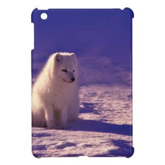 Coques iPad Mini Un Fox arctique en Norvège