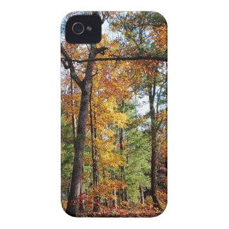 Coques iPhone 4 Automne dans la forêt