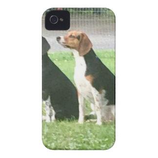 Coques iPhone 4 Beagles