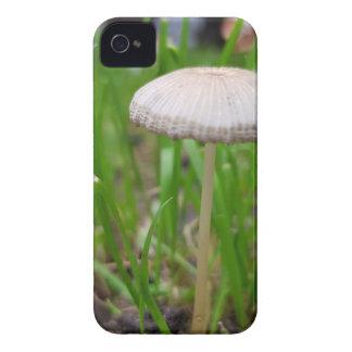 Coques iPhone 4 Case-Mate champignon de bébé