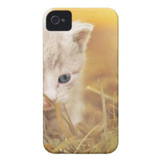 Coques iPhone 4 Case-Mate Charme mignon d'animal de compagnie de chaton de