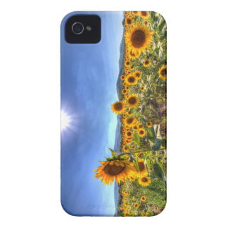 Coques iPhone 4 Case-Mate Gisements de tournesol d'été