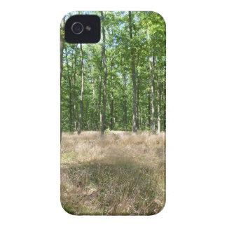 Coques iPhone 4 Case-Mate sous bois  et tapis de graminées à l'automne