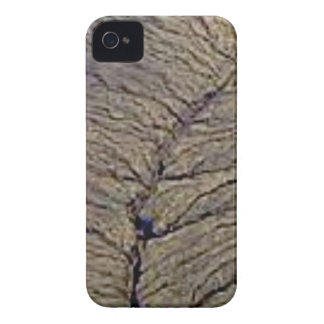 Coques iPhone 4 Case-Mate veines de terre