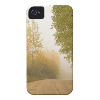 Coques iPhone 4 Dans la brume