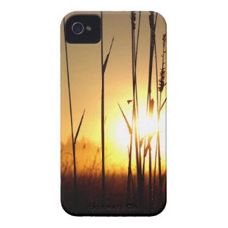 Coques iPhone 4 Lever de soleil brumeux sur l'île de St Joseph