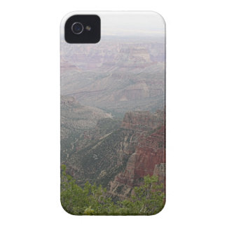 Coques iPhone 4 Matin brumeux de canyon grand, Arizona