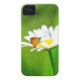 Coques iPhone 4 MK2A8183_v01
