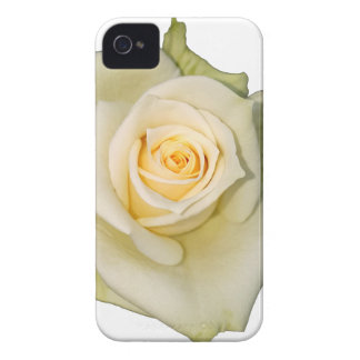 Coques iPhone 4 Rose blanche