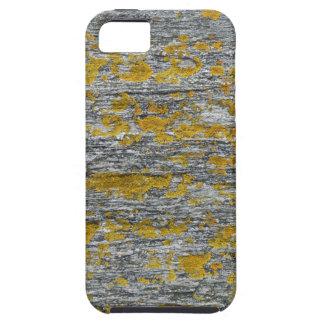 Coques iPhone 5 Case-Mate Lichens sur pierre de granit