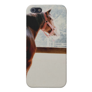 Coques iPhone 5 Clydesdale majestueux