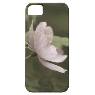 Coques iPhone 5 fleur pourpre aged8 de fleurs