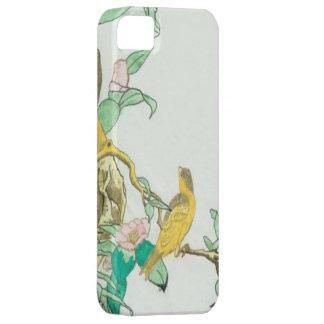 Coques iPhone 5 little BIRD