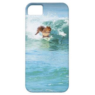 Coques iPhone 5 Surfer d'écureuil sur la mer