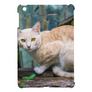 Coques Pour iPad Mini chat