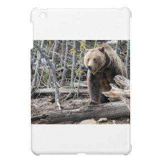 Coques Pour iPad Mini Ours gris en parc national Etats-Unis de