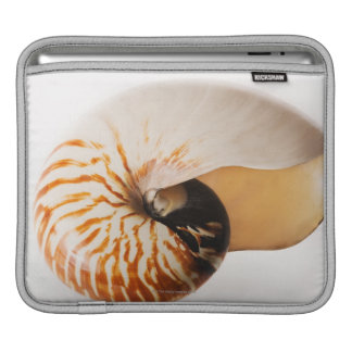Coquillage de Nautilus (stenomphalus de Nautilus) Poches iPad