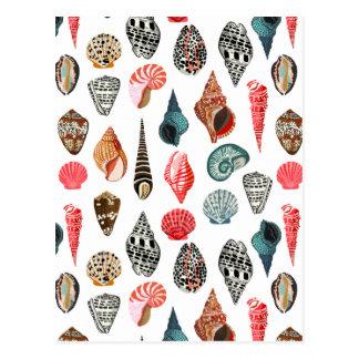Coquillage Shell d'été nautique/Andrea Lauren Carte Postale
