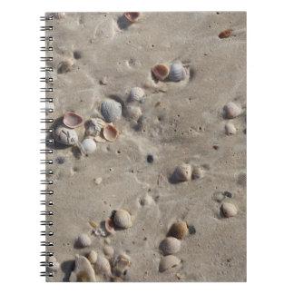 Coquillages dans le sable humide carnet à spirale