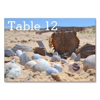 Coquillages sur la plage par Shirley Taylor Carte