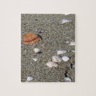 Coquillages sur le sable. Arrière - plan de plage Puzzle