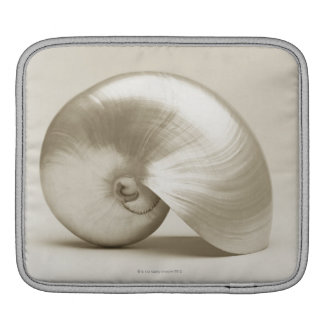 Coquille Pearlised de mer de nautilus Poches Pour iPad