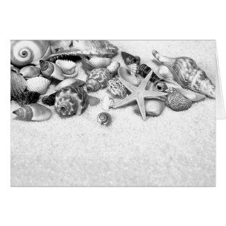 Coquilles et carte d'étoiles de mer
