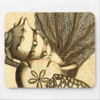 Coquilles neutres et collection de corail tapis de souris