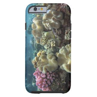 Corail, récif d'Agincourt, la Grande barrière de Coque iPhone 6 Tough