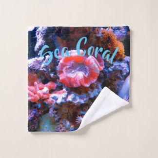 Corail tropical coloré