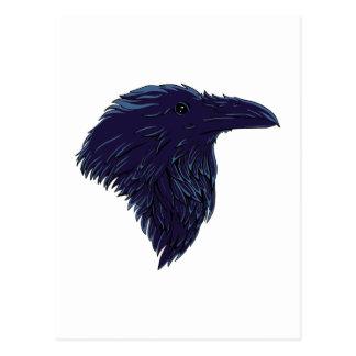 Corbeau raven carte postale