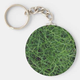 Cordes vertes de plante porte-clef