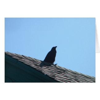 Corneille sur le toit cartes