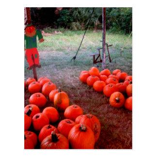 Correction de citrouille de Halloween Carte Postale