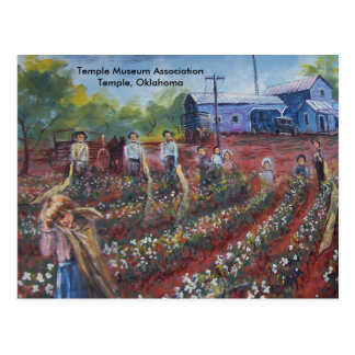Coton Pickin dans l'Oklahoma Carte Postale