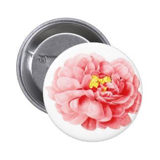 Cottage minable de fleur rose rose de chou badge