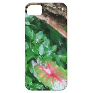 Couche de Cellulaire «Fanatique d'aliments Coques Case-Mate iPhone 5