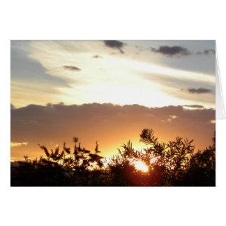 Coucher du soleil de Canberra Carte De Vœux