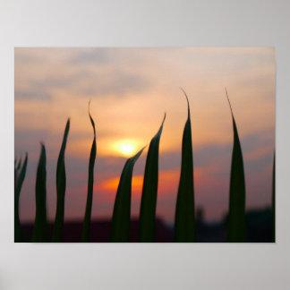 Coucher du soleil de notre affiche de dessus de poster