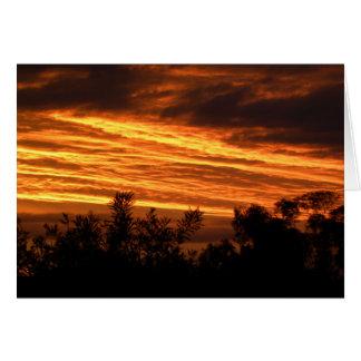 Coucher du soleil d'été à Canberra Carte De Vœux