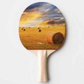 Coucher du soleil d'or au-dessus de champ de ferme raquette de ping pong