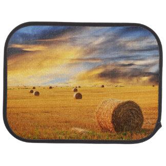 Coucher du soleil d'or au-dessus de champ de ferme tapis de voiture