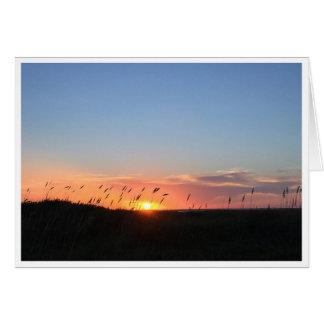 Coucher du soleil et avoine de mer sur la plage de carte de vœux