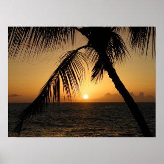 coucher du soleil hawaïen poster