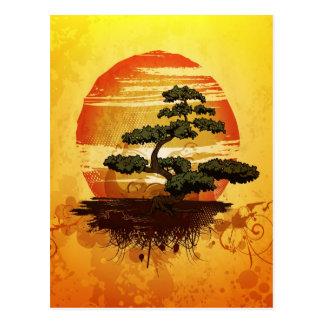 Coucher du soleil japonais d'arbre de bonsaïs carte postale